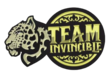 Team Invincible (dota2)
